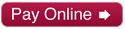 storagemax pay online